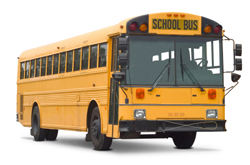 School bus glass and windshield products