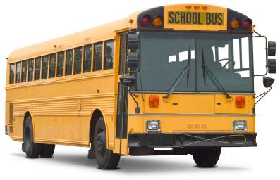Bus Glass And Windshield Distributors School Bus Glass
